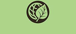 AvGreenervWorld logo
